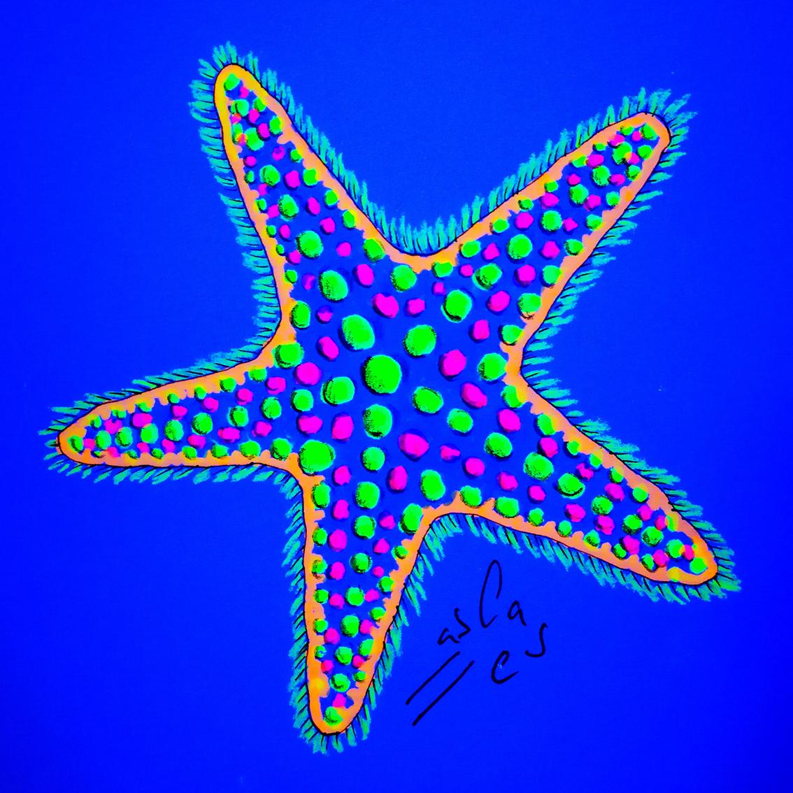 Vicky-Casellas.-Estrella-de-mar.-Ilustración-fluorescente.-Fluo-art-Casellas.-Fluoresent-art